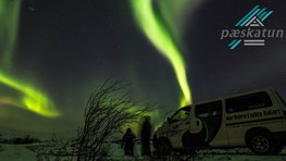 Student discount on Northern Lights Safari in Alta